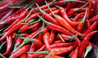 Semillas de Chile picante Thai