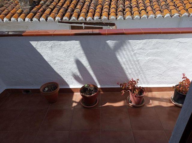 Casa en venta en Iznate (Iznate, Málaga)