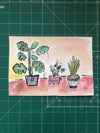 Ilustración de plantas tamaño postal #walla_hpu