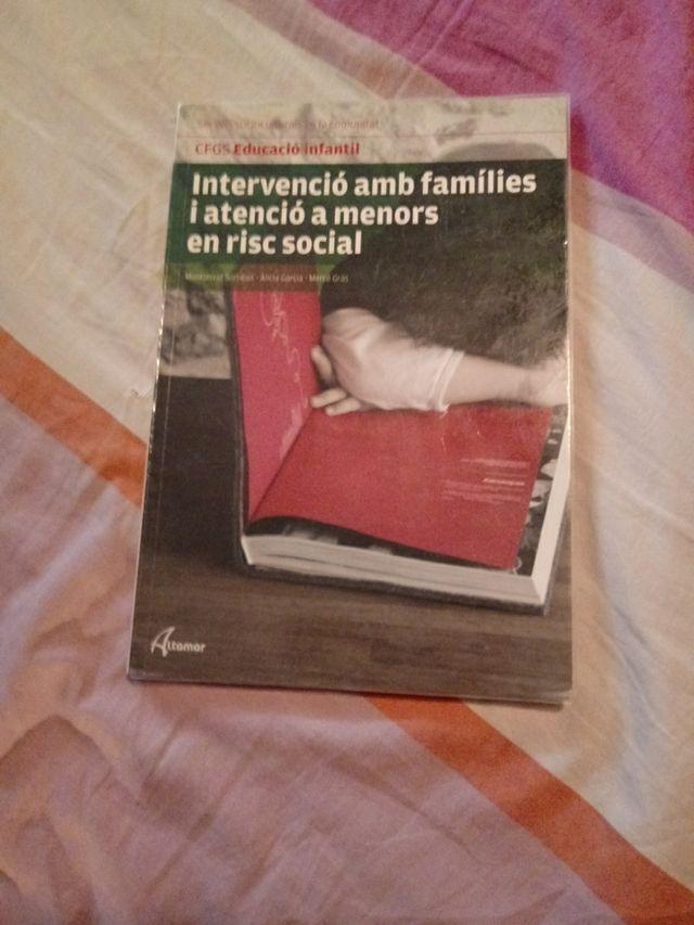 intervenció amb families i atenció a menors en ...