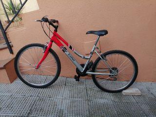 bicicleta Glove Trotter 124 Y
