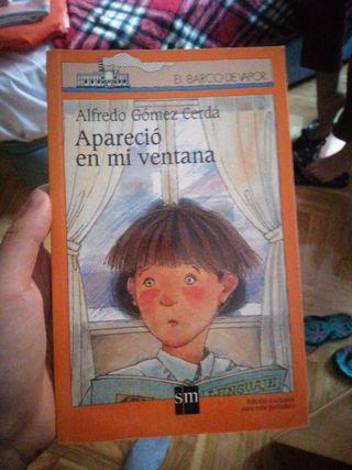 Libro 'Apareció en mi ventana'