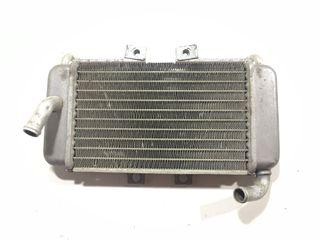Radiador Piaggio NRG 50 Cc 2