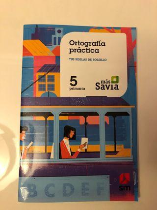 Ortografía Práctica 5 primaria