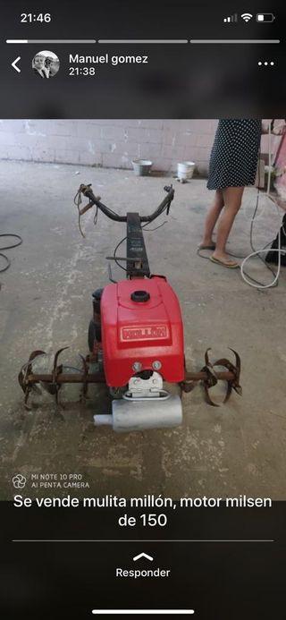 mula mecanica
