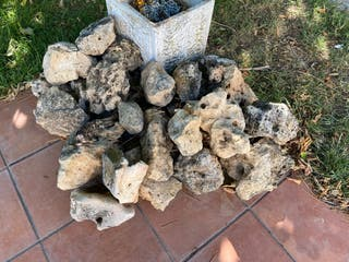 Piedras y maceta
