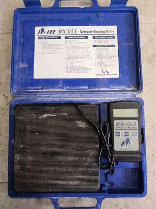 Báscula potable de carga digital ITE WS-055