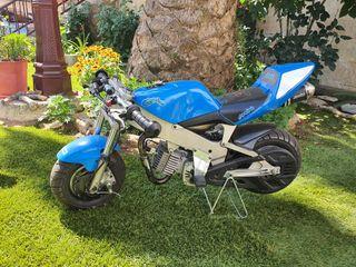 Mini moto polini