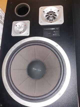 Altavoces Thomson RA-6001 60watts(RMS) 160W(PMPO)