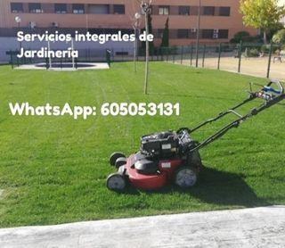Jardinero Profesional / Servicios Jardinería
