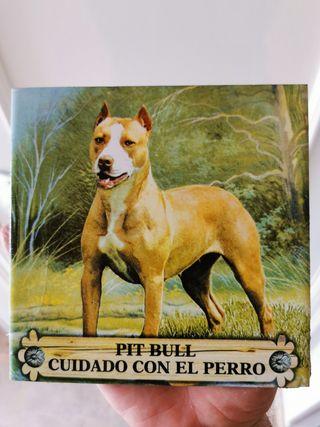 Azulejo Pitbull