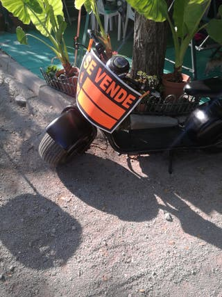 patinete eléctrico scooter citycoco