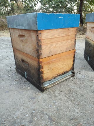 Vendo 10 colmenas Langstroth