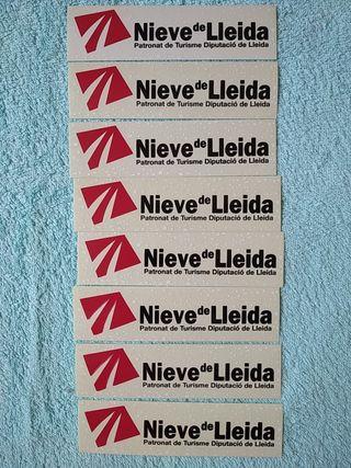 PEGATINAS NIEVE DE LLEIDA