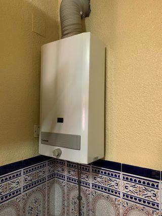 Calentador de gas instantáneo