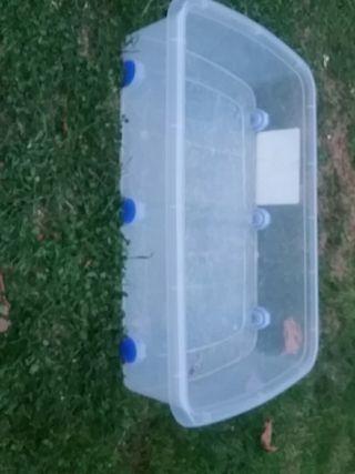 Caja de plastico para meter cosas