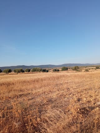 Terrenos en Sonseca para casas de campo