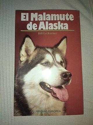 El malamute de Alaska