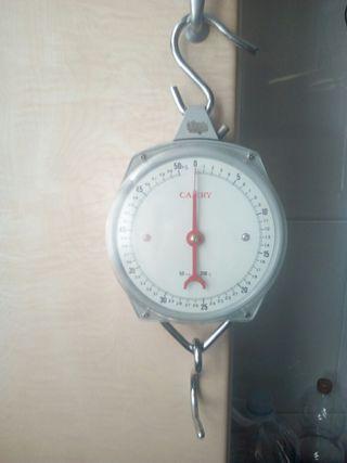balanza 50kg, bascula, peso