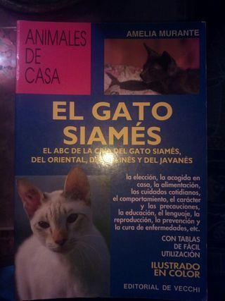 libro el gato siames