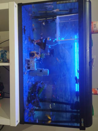 aquario 100 litros con filtro