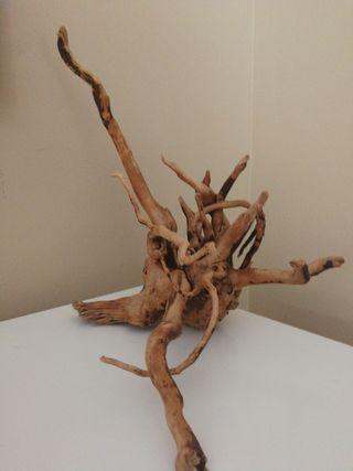 tronco raíz natural para acuario terrario