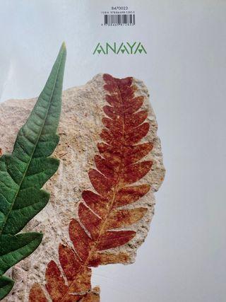Libros 2° bachillerato Anaya, Bruño, Oxford