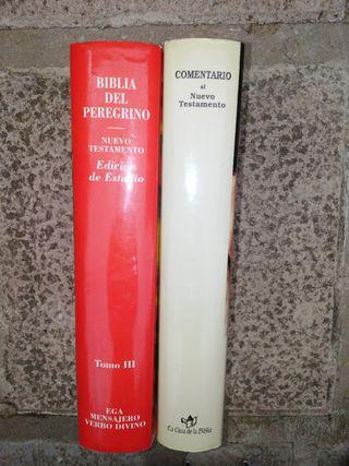 Comentario del Nuevo Testamento y Biblia del Pereg