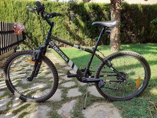 Bicicleta para + 10 años