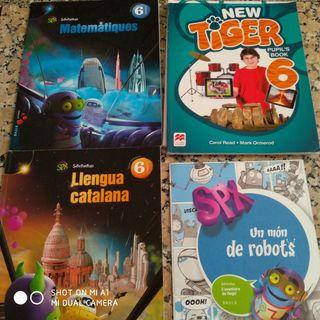 Libros 6to de primaria