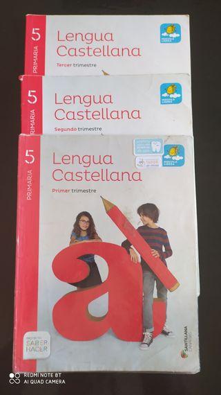 lengua castellana de quinto de primaria