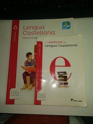 lengua castellana 6º de primaria CP 45 45 79