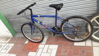 bici 24PULGA