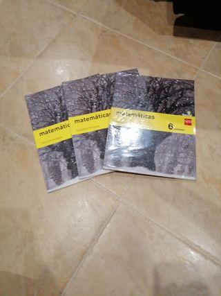 libro matemáticas 6° de primaria sm