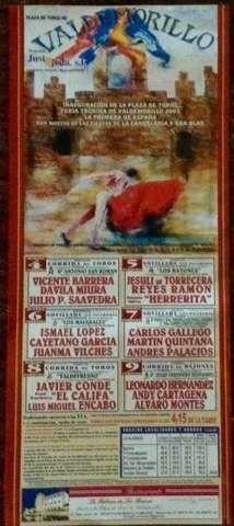 CARTEL DE TOROS DE VALDEMORILLO 2003