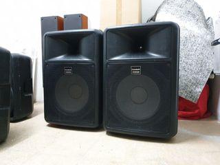 Altavoces Professionales 600 watios, 15 pulgadas
