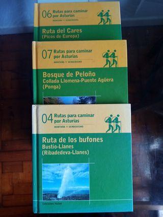Lote de libros de rutas