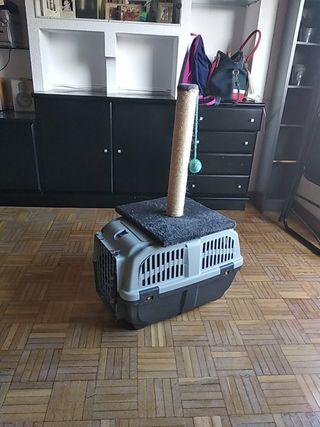 Transportin para gatos y juguete.