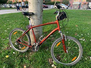 Bicicleta de paseo xl