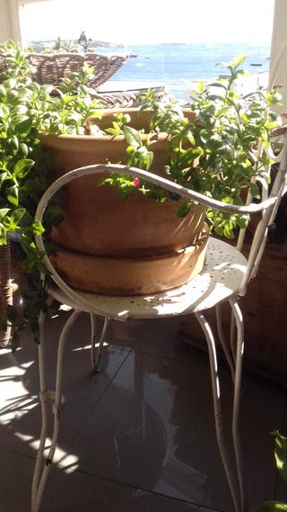 Macetas de terracota barro cerámica