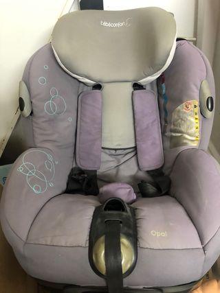 Sillita de coche Bebé confort
