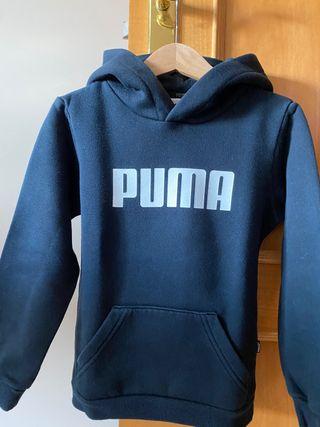 Sidadera Puma