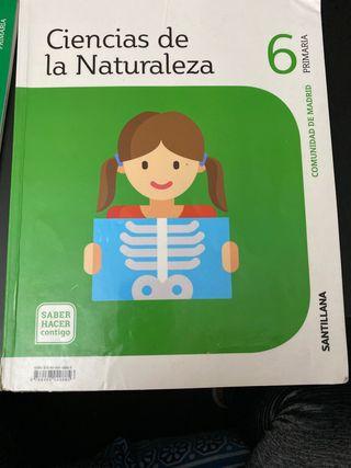 CIENCIAS DE LA NATURALEZA SANTILLANA 6