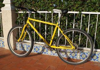 Bicicleta de montaña de adulto