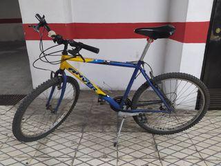 Bicicleta para la nueva normalidad