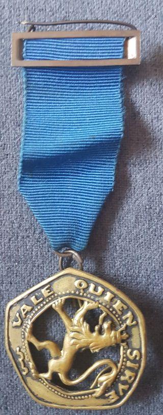 Medalla insignia pin vale quien sirve oje