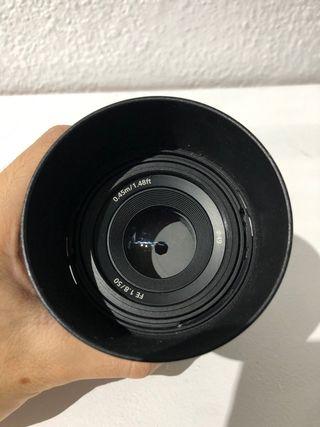 50mm Sony 1.8 Full frame
