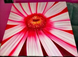 Cuadro de flor moderna