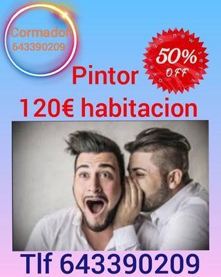 pintor economico 120€