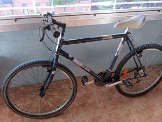 Bicicleta adulto de montaña